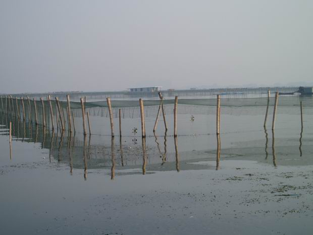 阳澄湖64