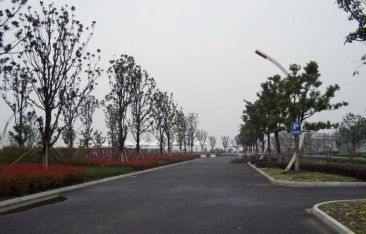 莲花岛码头停车场86